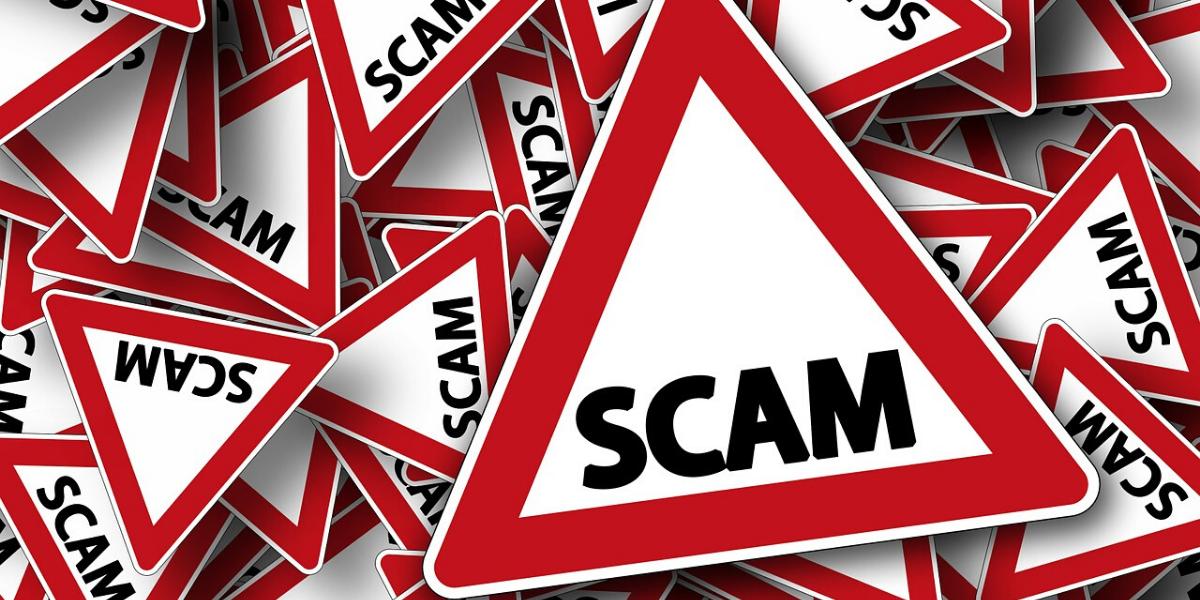 Congressional Checks scam