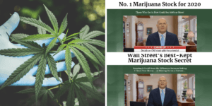 No. 1 Marijuana Stock for 2020 (1)