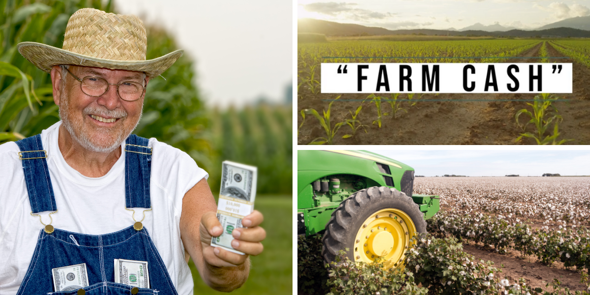 Jason Williams Farm Cash Review
